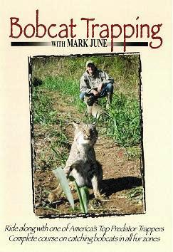 "Mark June's ""Bobcat Trapping"" DVD mjcatdvd"